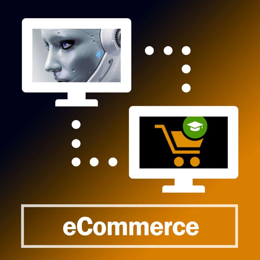 Learn Ecommerce